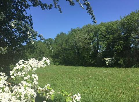 Belle campagne au printemps