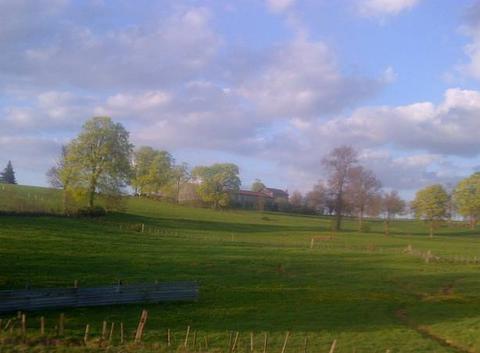 Bleu-blanc-vert : l'effet (les fées) du printemps sur fadaise (Fadeze)