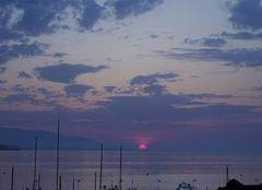 Mer Saint-Jean-Cap-Ferrat 06230 Rose d'Avril