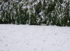 Neige Saint-Pierre-du-Bosguerard 27370 Neige