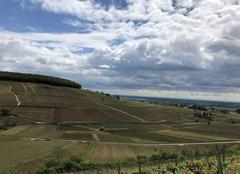 Nuages Pernand-Vergelesses 21420 Colline de Corton sous un ciel menaçant
