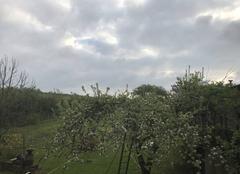 Ciel Tressange 57710 Vue du jardin
