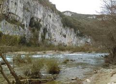 Faune/Flore Vallon-Pont-d'Arc 07150 Ardèche au printemps
