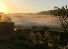 Brouillard Saint-Martial-de-Valette 24300 Brules et gel en mai