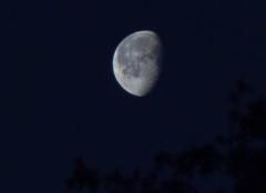 Ciel Bonnemaison 14260 Quartier de lune