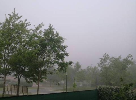 Brume ce matin à carcans