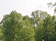 Ciel Bazouges-sur-le-Loir 72200 Beau soleil