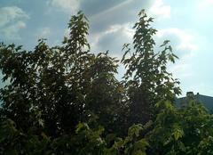 Nuages Troyes 10000 Nuage orageux