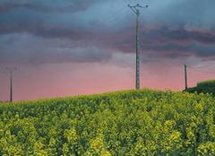Ciel Chemille-sur-Deme 37370 Le ciel va nous tomber sur la tete