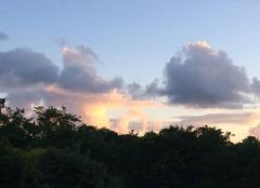 Ciel Le Bernard 85560 Magnifique coucher de soleil