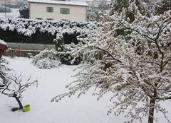 Neige Le Puy-en-Velay 43000 Neige de mai