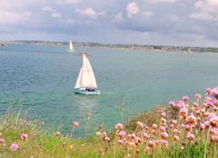 Mer Carantec 29660 La rentree des bateaux après la course en Grande Bretagne :