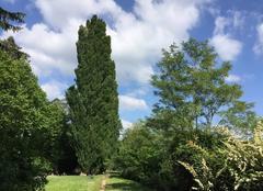 Ciel Romans-sur-Isere 26100 Du vert, du bleu et du blanc sur les bords d'Isère