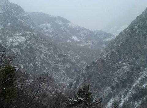 La neige a la maglia