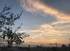 Ciel Reims 51100 Coucher du soleil