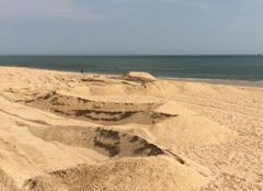 Insolite Pornichet 44380 Serpent de sable