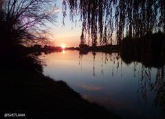 Ciel Villiers-Charlemagne 53170 Coucher de soleil en bord d'étang