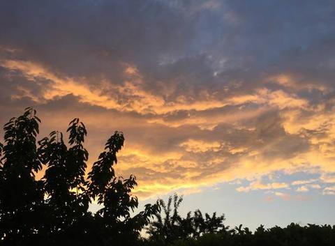 Un soir en campagne, au soleil couchant