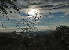 Ciel Langres 52200 Lever de soleil