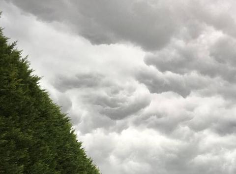 Avant l?orage