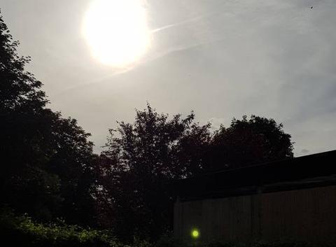 Un soleil timide