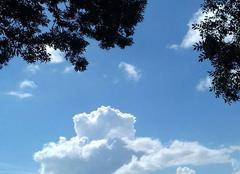 Ciel Caylus 82160 Gros  nuages cotonneux
