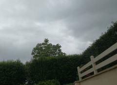 Pluie Saint-Germain-de-Tallevende 14500 Temps pourri