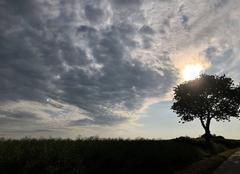 Ciel Langourla 22330 Au matin