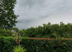 Orage Saint-Martin-du-Fouilloux 49170 Sa gronde