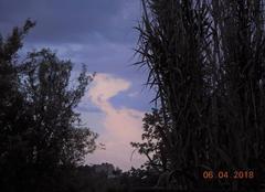 Ciel Nogaret 31540 Comme un animal de nuages....