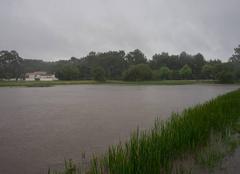 Pluie La Tremblade 17390 Importantes inondations terrains maraichers