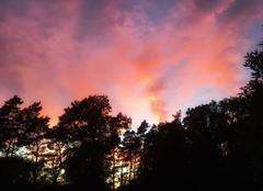 Ciel Tour-en-Sologne 41250 Reflets au soleil couchant.