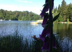Ciel Pexonne 54540 Les bordes , lac de Pierre-Percée