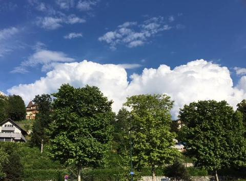 Les nuages au-dessus des arbres