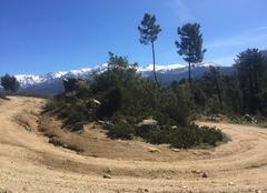 Faune/Flore Tavera 20163 Virage sur fond de montagnes enneigées