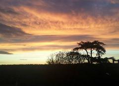Insolite Vernaison 69390 Magnifique lever du soleil