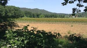 Ciel Mours-Saint-Eusebe 26540 Ciel estival en campagne