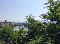 Chaleur Romans-sur-Isere 26100 Végétation des bords d'Isère sous la chaleur de