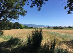 Ciel Mours-Saint-Eusebe 26540 Belle campagne en été