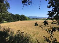 Ciel Mours-Saint-Eusebe 26540 Belle campagne aux couleurs de l'été
