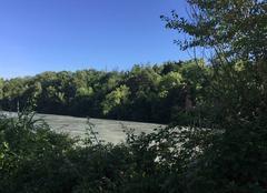 Faune/Flore Romans-sur-Isere 26100 Belles berges d'Isère aux couleurs de l'été