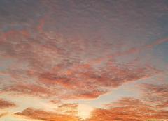 Ciel Zegerscappel 59470 Coucher de soleil