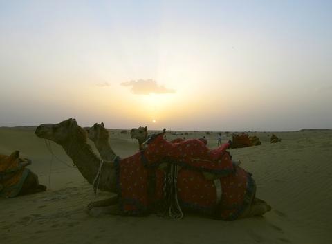 Coucher de soleil dans le désert de Thar