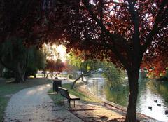 Climat Sacramento Sacramento, Mc Kinley Park en fin d'après-midi