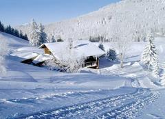 Neige Triberg im Schwarzwald Neige en Forêt noire