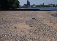 Secheresse Rhin Cologne