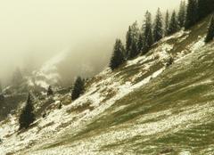 Brouillard Feldkirch Brouillard d'automne