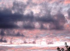 Nuages Harlow Coucher de soleil -74a