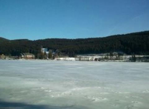 Banquise au Titisee