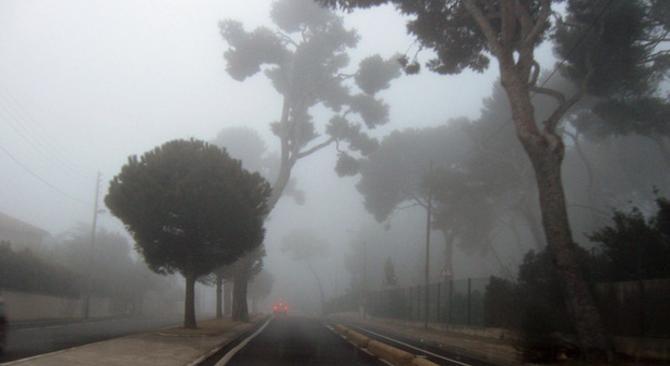Reporters - Marseille 13000 - Brouillard